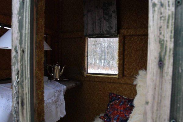 The Hide (Elm), particolare 2, 40x60, stampa fotografica su dibond sotto vetro acrilico, 2012